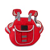Dometool Kids Children's Motorcycle Bike Bycle Safety Belt Adjustable Electric Vehicle Safe Strap Carrier (Color: Red)