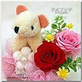 仔犬プリザ(チワワ) プリザーブドフラワー プレゼント 犬 イヌ いぬ 和風 誕生日 お祝い プレゼント ギフト 花