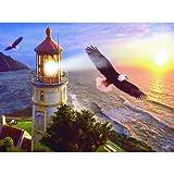 Eagle Light
