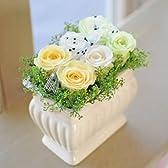みずみずしい生花の風合を保つ花 エーデルワイス 【セレモニー3 イエローミックス】 プリザーブドフラワー 枯れないお花