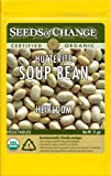 Seeds of Change Certified Organic Bean, Bush, Hutterite - 18.3 grams, 50 Seeds Pack
