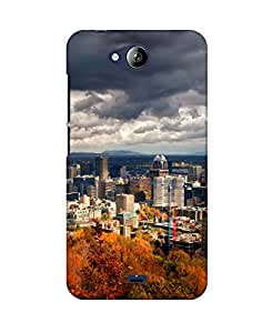 PickPattern Back Cover for Micromax Canvas Play Q355