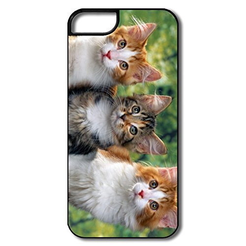 Exotic Perfect-Fit Three Lovely Cat Cell Phone 5S Case