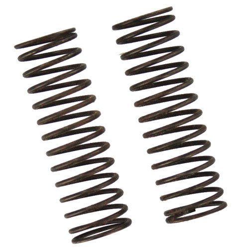 Redcat Racing Front Shock Springs (2 Piece) - 1