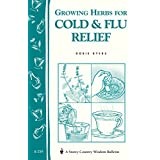 Growing Herbs for Cold & Flu Relief: Storey's Country Wisdom Bulletin A-219 (Storey Country Wisdom Bulletin, a-219) ~ Dorie Byers