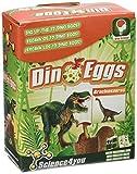 Science4you - Dino eggs Brachiosaurus, huevo de dinosaurio - juguete científico y educativo