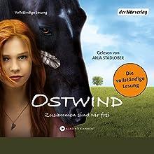 Ostwind: Zusammen sind wir frei (Ostwind 1) Hörbuch von Kristina Magdalena Henn, Lea Schmidbauer, Carola Wimmer Gesprochen von: Anja Stadlober