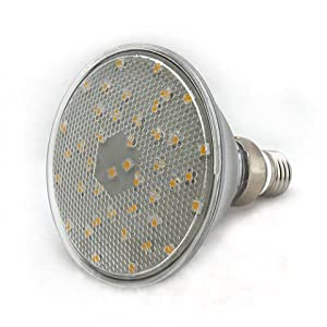 Buy Brightest Par38 42 White Smd Led Flood Light Bulb 1314wh Cv With Best Price Outdoor Flood