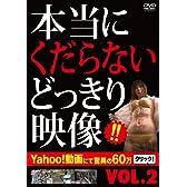 本当にくだらないどっきり映像vol.2 [DVD]