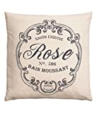 "French Vintage Accent Decorative 100% Cotton Canvas Throw Pillow Cover Cushion 20 X 20"" (Natural White)"