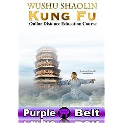 Wushu Shaolin Kung Fu : Purple Belt