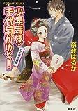 少年舞妓・千代菊がゆく! ひと夏の冒険