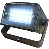 LED Super Strobe - Battery Powered - 21 High Power LEDs - DJs, Clubs, Parties or Halloween Decoration - Adkins Professional Lighting