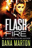Flash Fire: A Navy SEAL Romance (Civilian Recovery Book 2)