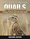 Quails: Amazing Picture and Facts About Quails (Lets Learn About)