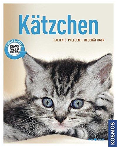 Ktzchen-halten-pflegen-beschftigen-Mein-Tier