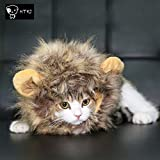HTKJ Lion Mane Dog Cat Costume Cute Pet Wig Hat for Cat or Small Dog Dress up Halloween Christmas (Multi)