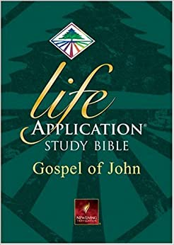 Studying the book of john