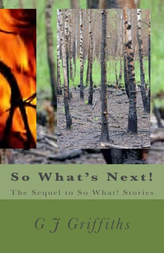 So What's Next!: The Sequel to So What! Stories