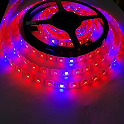 Toogod 16.4ft/5m 300LED 5050 Growing DC12V LED Strip Light Waterproof Red Blue 5:1 for Aquarium Greenhouse Hydroponic Plant Flower Veg Grow Light
