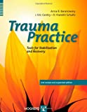 img - for Trauma Practice, Tools for Stabilization and Recovery book / textbook / text book