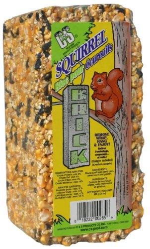 Cheap C & S Products Squirrel Brick, 8-Piece (CS08285)