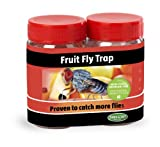 Tanglefoot 300000163 Fruit Fly Trap - 2 Pack