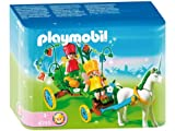 Playmobil Carriage with Unicorn Fairy