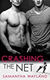 Crashing the Net (English Edition)