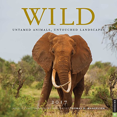 Wild 2017 Wall Calendar: Untamed Animals, Untouched Landscapes