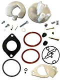 Briggs & Stratton 796184 Carburetor Overhaul Kit Replaces 698787 790032