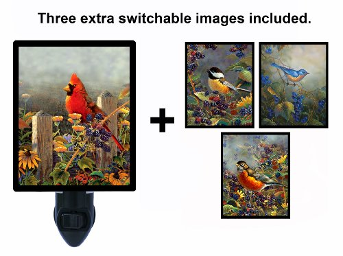 Night Light W/ Switchable Inserts - Sam Timm Bird Images Led Night Light