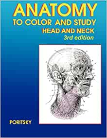 Anatomy to color and study head and neck 3rd edition ray Anatomy coloring book 4th edition