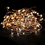 ZOIC 50/100LED(5M/10M) Copper Wire St...