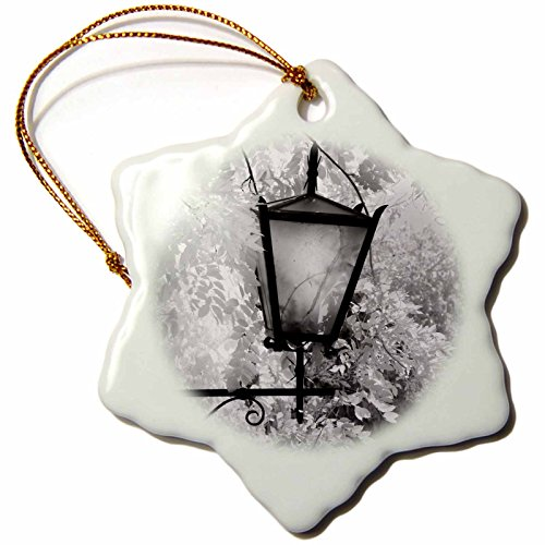 Danita Delimont - Tuscany - Light fixture, Montalcino, Italy, Tuscany - EU16 AJE0190 - Adam Jones - 3 inch Snowflake Porcelain Ornament (orn_82041_1)