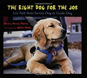 Right Dog For The Job Iras Path From Service Dog To Guide Dog by Walker Childrens