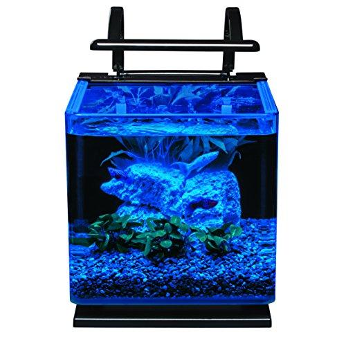 marineland contour glass aquarium kit with rail light 3