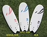 SOFTECH SURFBOARDS TORPEDO 5'4 SOFTBOARD GUAVA RED ソフテック サーフボード ソフトボード