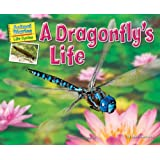 A Dragonfly's Life (Science Slam: Animal Diaries Life Cycles)