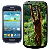 Fancy A Snuggle Orangutan Swinging Clip-on Hard Back Cover for Samsung Galaxy S3 Mini i8190