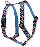 Lupine 1-Inch Flower Power Roman Harness for Medium and Large Dogs, 20 to 32-Inch