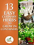 13 Easy Culinary Herbs To Grow In Containers (English Edition)