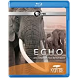 Echo: An Elephant to Remember [Blu-ray]