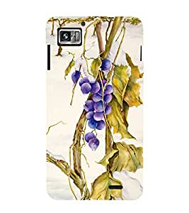 Vizagbeats blue berries Back Case Cover for Lenovo 860