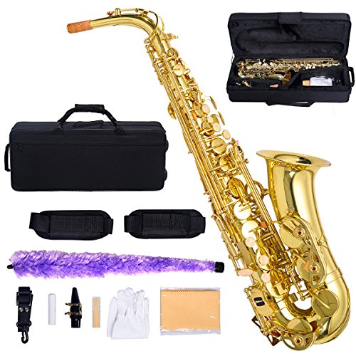 Professional Eb Alto Sax Saxophone Paint Gold with Case and Accessories Sturdy, Lightweight Case With Backpack Straps And Zipper Pocket (Curved Soprano Sax Stand compare prices)