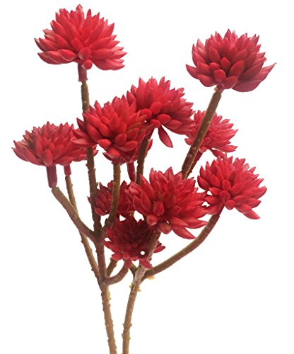 Meiliy 6 Heads Artificial Vinyl Succulent For Home Hotel Office Wedding Party Garden Craft Art Decor, 2 Bunches (Red)
