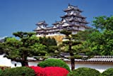 1500スモールピース ツツジと姫路城(兵庫県姫路市) (50x75cm)