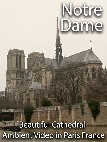 Notre Dame Beautiful Cathedral Ambient Video in Paris France