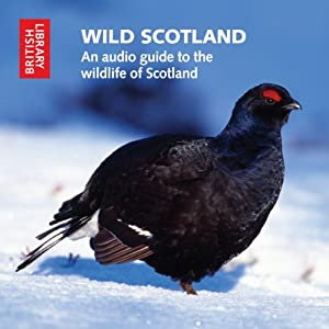 Wild Scotland: An Audio Guide to the Unique Wildlife of Scotland | [Cheryl Tipp]