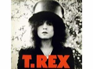The Slider (DE - 1972) [Vinyl LP record] [Schallplatte]